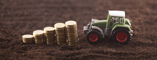 Focusing on finance – not just the farm