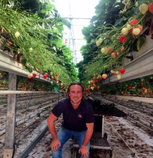 Zamecnik observing the growing process in the Netherlands